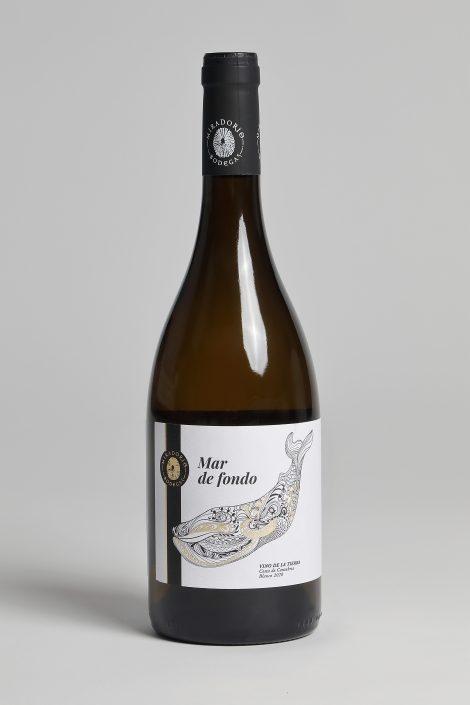 Botella-Mar de fondo-foto Javier Rosendo
